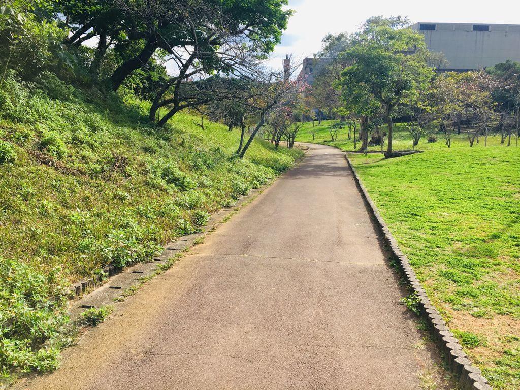 八重島公園の歩道